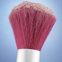blush-brush.jpg